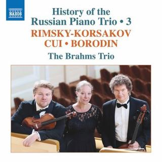 History of the Russian Piano Trio, Vol. 3 - The Brahms Trio