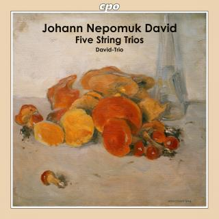 David, Johann Nepomuk: Five String Trios - David-Trio