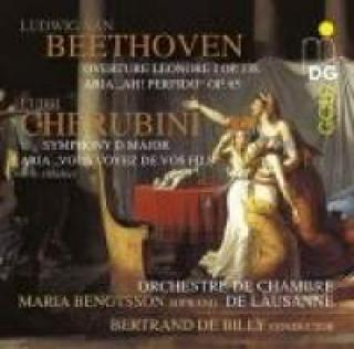 Bertrand De Billy Dirigerer Beethoven & Cherubini - Billy, Bertrand de