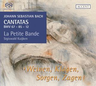 Bach: Cantatas For The Liturgical Year Volume 11 - La Petite Bande/Kuijken, Sigiswald