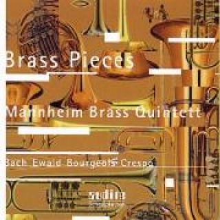Brass Pieces -