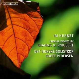 Im Herbst - Choral works by Brahms and Schubert - The Norwegian Soloists' Choir / Pedersen, Grete (conductor)