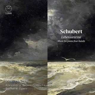 Schubert: Lebensstürme. Music for Piano Four-Hands - Duo Pleyel