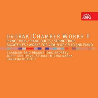 Dvořák: Chamber Works II - Various Artists